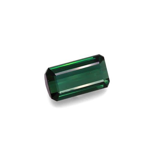 TG0367 1.jpg?auto=format&ixlib=php 3.3 - 15.09ct Basil Green Tourmaline stone