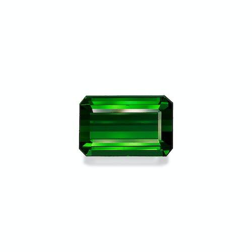 TG0368.jpg?auto=format&ixlib=php 3.3 - 16.01ct Basil Green Tourmaline stone