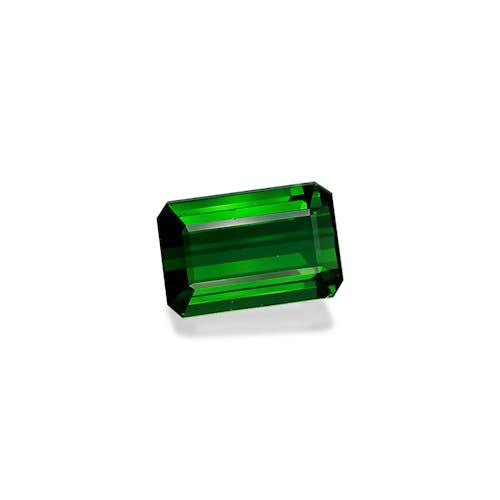 TG0368 1.jpg?auto=format&ixlib=php 3.3 - 16.01ct Basil Green Tourmaline stone