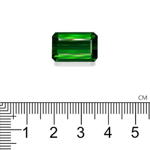 TG0368 2.jpg?auto=format&ixlib=php 3.3 - 16.01ct Basil Green Tourmaline stone