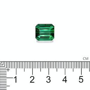 TG0377 : 8.04ct Green Tourmaline Scale Image