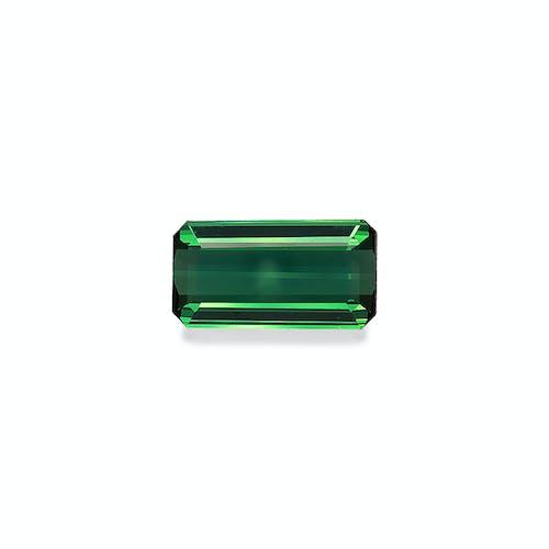 TG0379.jpg?auto=format&ixlib=php 3.3 - 8.79ct Green Tourmaline stone