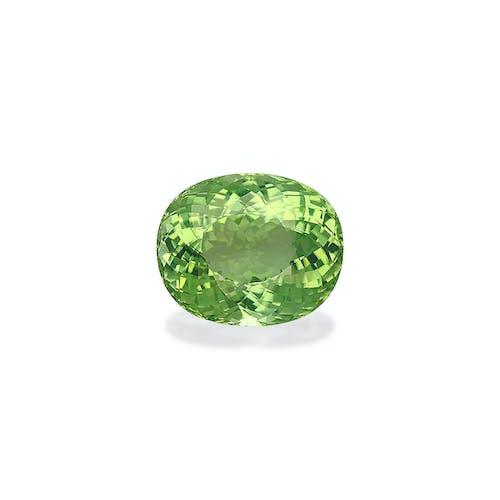 TG0390 : 53.45ct Green Tourmaline