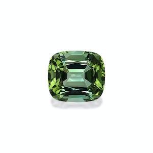 TG0398 : 33.71ct Green Tourmaline – 20x18mm