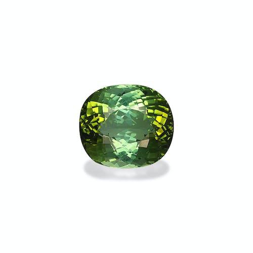 TG0404 : 20.02ct Green Tourmaline – 17x15mm