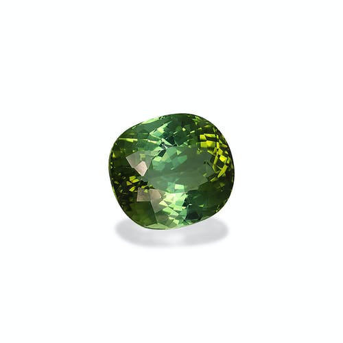 TG0404 1.jpg?auto=format&ixlib=php 3.3 - 20.02ct Green Tourmaline stone 17x15mm