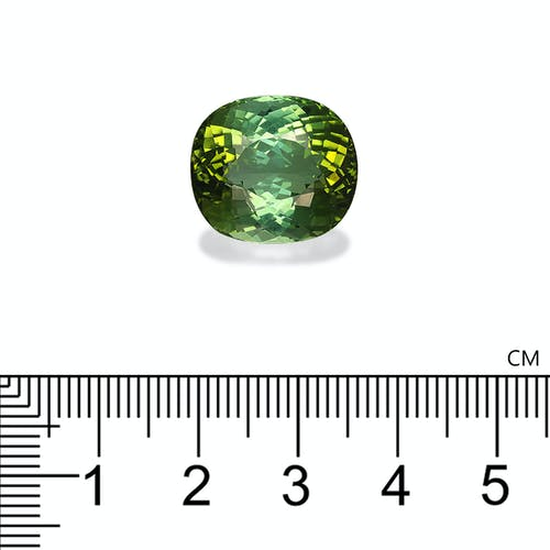 TG0404 2.jpg?auto=format&ixlib=php 3.3 - 20.02ct Green Tourmaline stone 17x15mm