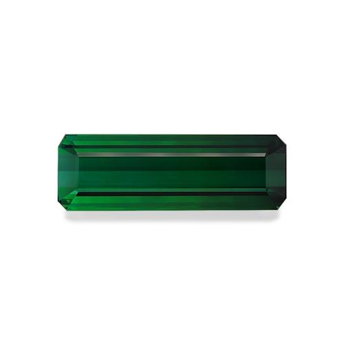 TG0410 : 65.06ct Green Tourmaline