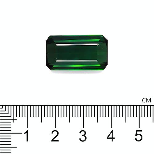 TG0414 2.jpg?auto=format&ixlib=php 3.3 - 18.90ct Basil Green Tourmaline stone