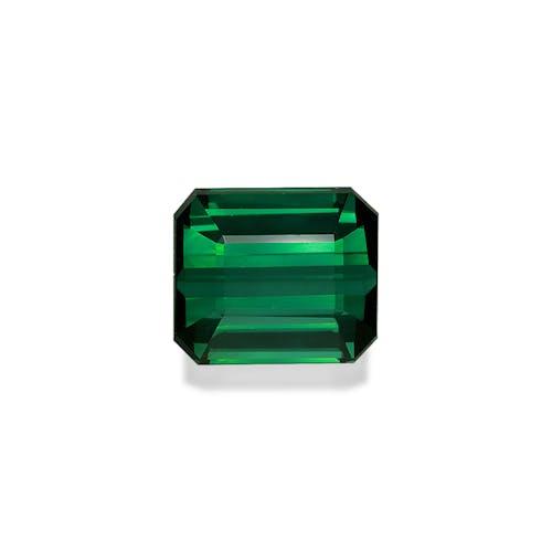 TG0417 : 16.66ct Basil Green Tourmaline – 14x12mm