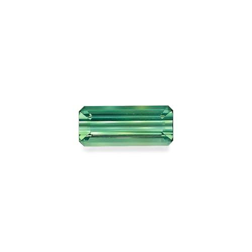 TG0430.jpg?auto=format&ixlib=php 3.3 - 20.72ct Seafoam Green Tourmaline stone