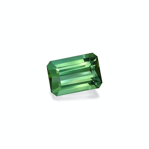 TG0431 : 26.14ct Cotton Green Tourmaline