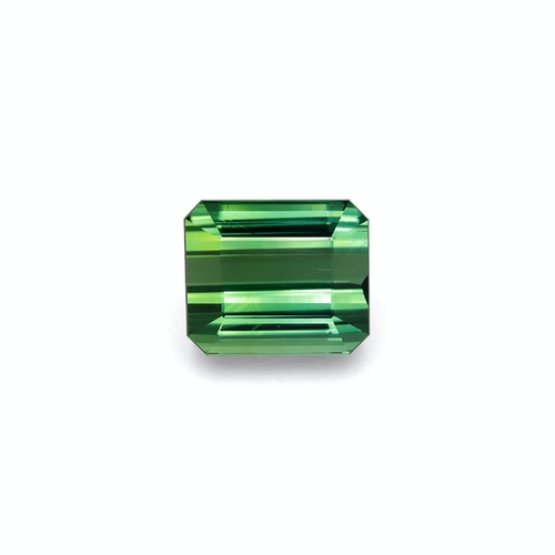 TG0433 : 27.63ct Green Tourmaline