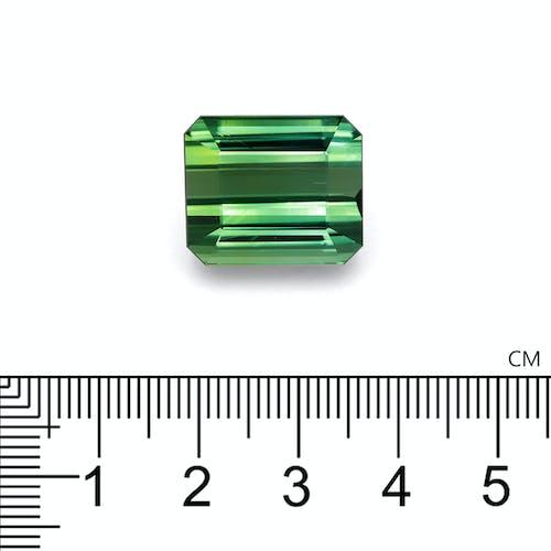 TG0433 2.jpg?auto=format&ixlib=php 3.3 - 27.63ct Cotton Green Tourmaline stone 17x15mm