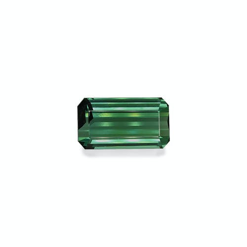 TG0444.jpg?auto=format&ixlib=php 3.3 - 49.48ct Cotton Green Tourmaline stone