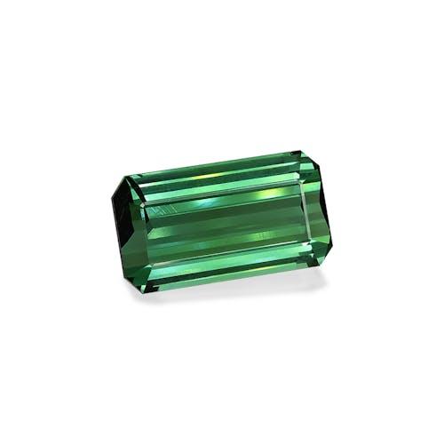 TG0444 1.jpg?auto=format&ixlib=php 3.3 - 49.48ct Cotton Green Tourmaline stone