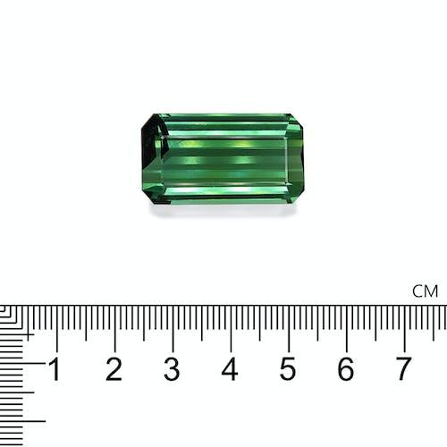 TG0444 2.jpg?auto=format&ixlib=php 3.3 - 49.48ct Cotton Green Tourmaline stone