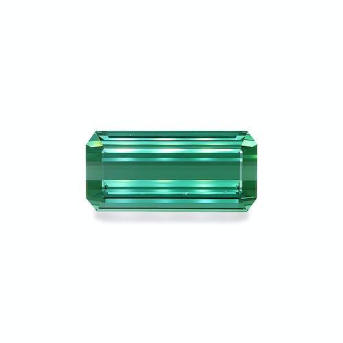 TG0456 : 50.46ct Green Tourmaline