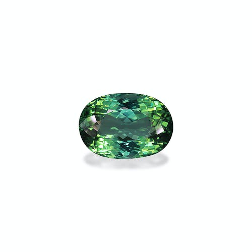 TG0496 : 16.95ct Seafoam Green Tourmaline