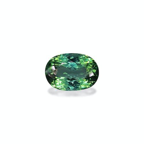 TG0496.jpg?auto=format&ixlib=php 3.3 - 16.95ct Seafoam Green Tourmaline stone