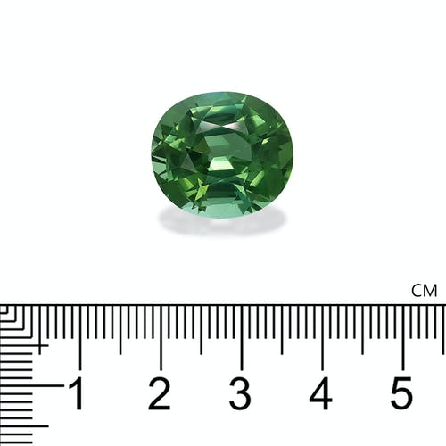 TG0502 2.jpg?auto=format&ixlib=php 3.3 - 20.31ct Green Tourmaline stone