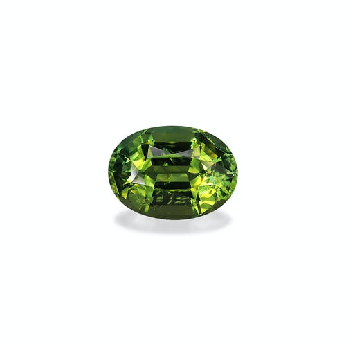 TG0520 : 15.75ct Moss Green Tourmaline – 18x13mm