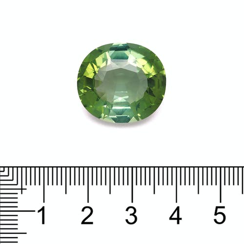 TG0524 : 20.99ct Green Tourmaline Scale Image