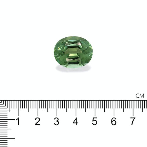 TG0528 : 25.87ct Green Tourmaline Scale Image