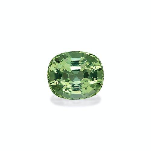 TG0529.jpg?auto=compress%2Cformat&fit=scale&h=500&ixlib=php 1.2 - TG0529 : 35.87ct Green Tourmaline