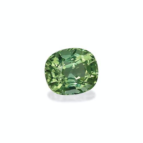 TG0529 1.jpg?auto=format&ixlib=php 3.3 - 35.87ct Mist Green Tourmaline stone
