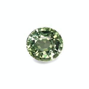 TG0532 : 37.82ct Pale Green Tourmaline