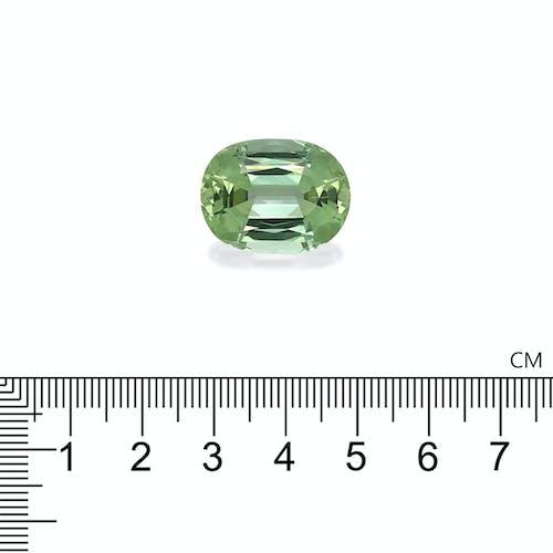 TG0534 2.jpg?auto=format&ixlib=php 3.3 - 27.43ct Pale Green Tourmaline stone