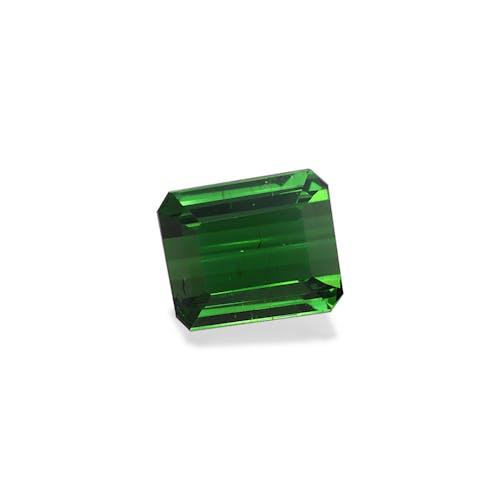 TG0554 : 10.83ct Moss Green Tourmaline – 13x11mm