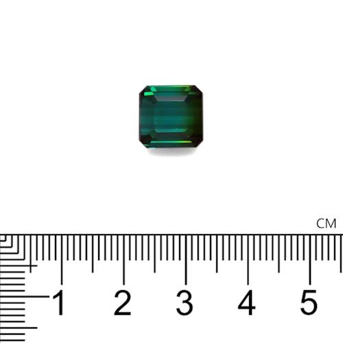 TG0555 2.jpg?auto=format&ixlib=php 3.3 - 7.00ct Bi Colour Tourmaline stone 10mm