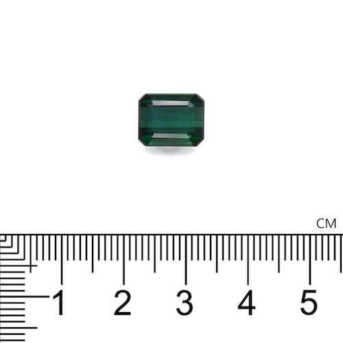 TG0558 2.jpg?auto=format&ixlib=php 3.3 - 4.73ct Basil Green Tourmaline stone 10x8mm