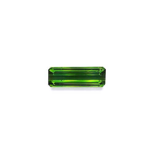 TG0563.jpg?auto=format&ixlib=php 3.3 - 5.69ct Moss Green Tourmaline stone