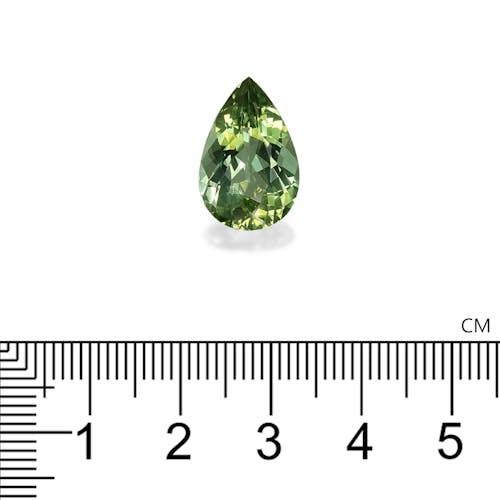 TG0597 : 8.30ct Green Tourmaline