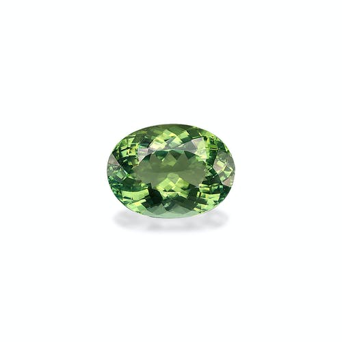 TG0598 : 13.47ct Pistachio Green Tourmaline –