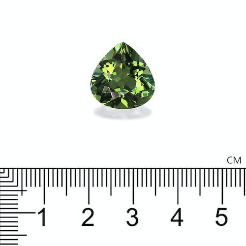 TG0599 : 9.99ct Green Tourmaline