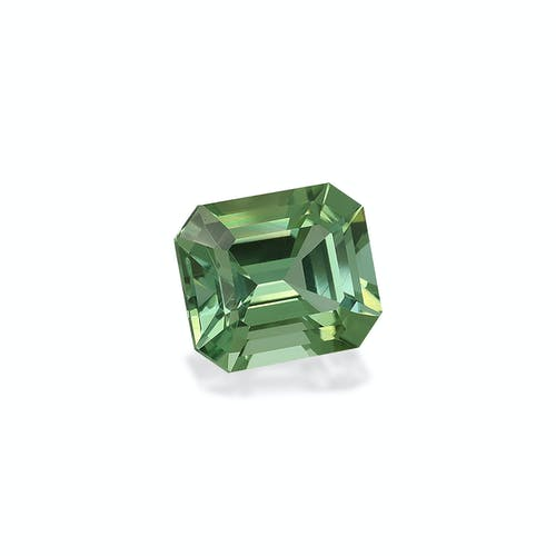 TG0603 : 22.45ct Green Tourmaline Back Image