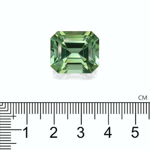TG0603 : 22.45ct Green Tourmaline Scale Image