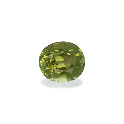 TG0604 : 17.00ct Forest Green Tourmaline – 17x15mm