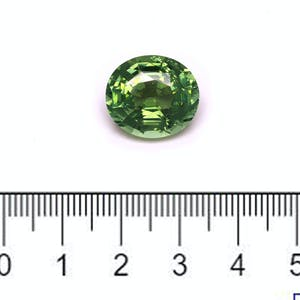 TG0611 : 11.82ct Green Tourmaline Scale Image