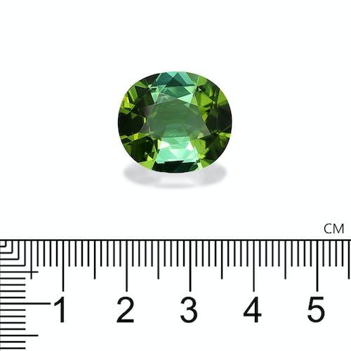 TG0615 2.jpg?auto=format&ixlib=php 3.3 - 16.71ct Green Tourmaline stone 18x16mm
