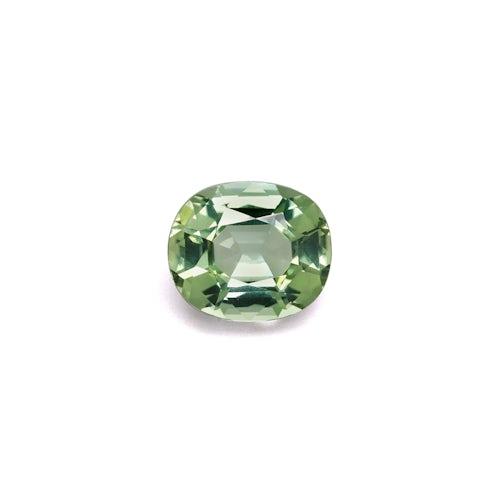 TG0616 : 11.12ct Green Tourmaline