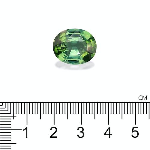 TG0620 2.jpg?auto=format&ixlib=php 3.3 - 10.08ct Green Tourmaline stone