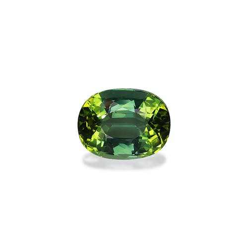TG0629.jpg?auto=format&ixlib=php 3.3 - 16.73ct Green Tourmaline stone