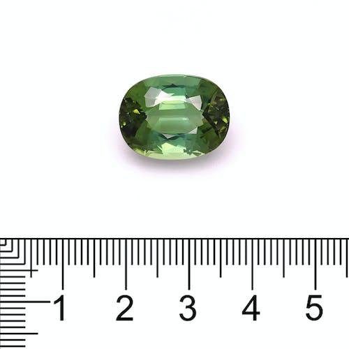 TG0629 : 16.73ct Green Tourmaline Scale Image