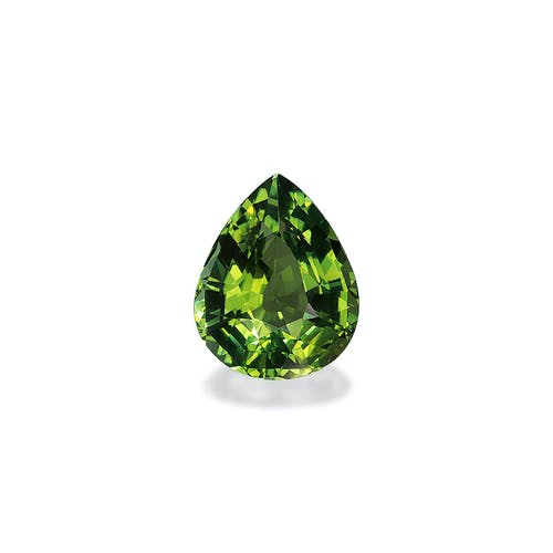 TG0632.jpg?auto=format&ixlib=php 3.3 - 12.59ct Pistachio Green Tourmaline stone