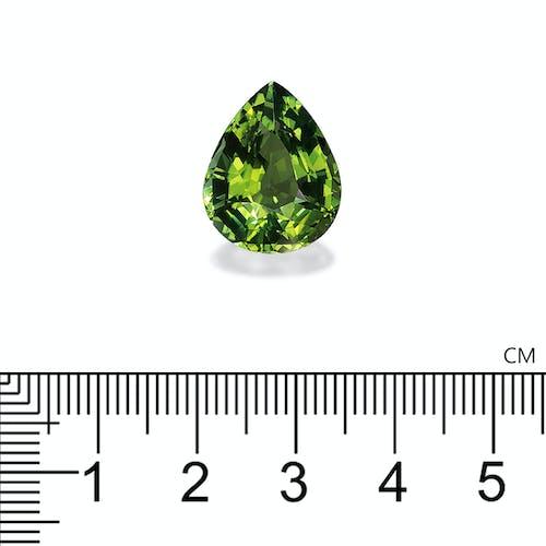 TG0632 2.jpg?auto=format&ixlib=php 3.3 - 12.59ct Pistachio Green Tourmaline stone